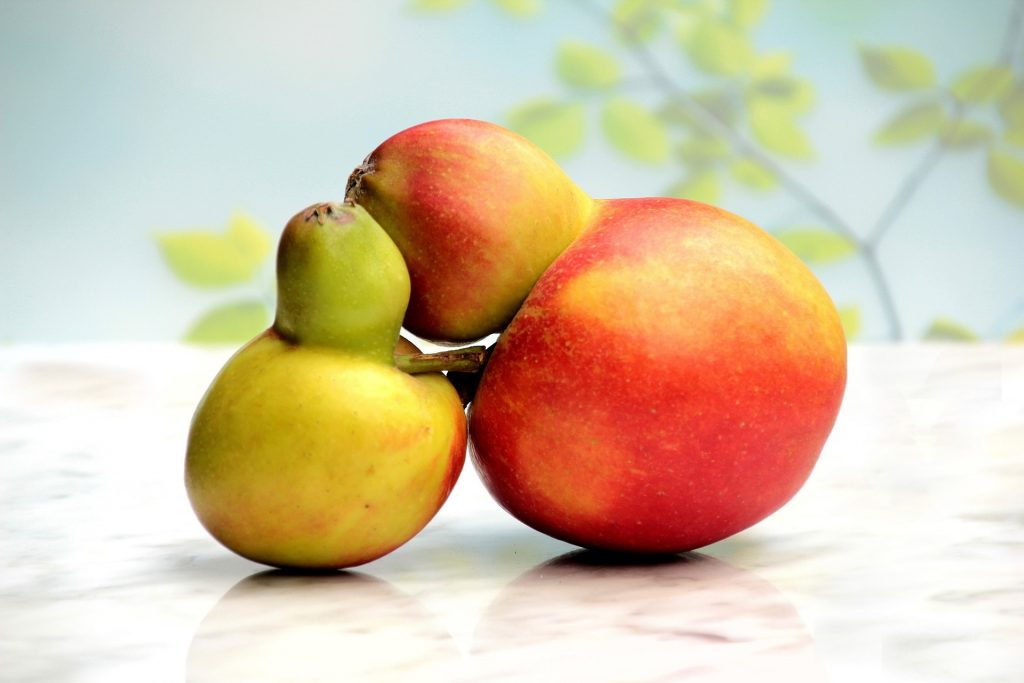 fruit-741172_1920